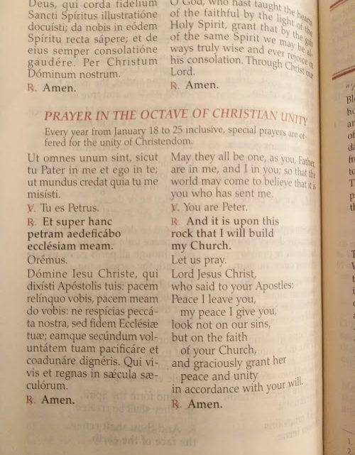 Octave for Christian Unity 2019